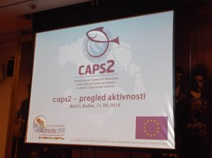caps 2 - 2